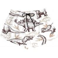 BONIPE Damen Badehose Antik Retro World Dinosaurier Quick Dry Surf Beach Board Shorts mit Kordelzug und Taschen S Bekleidung